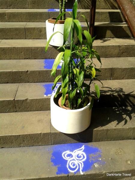 plant pot Mumbai