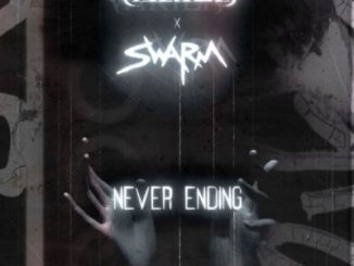 Never Ending - varies x SWARM