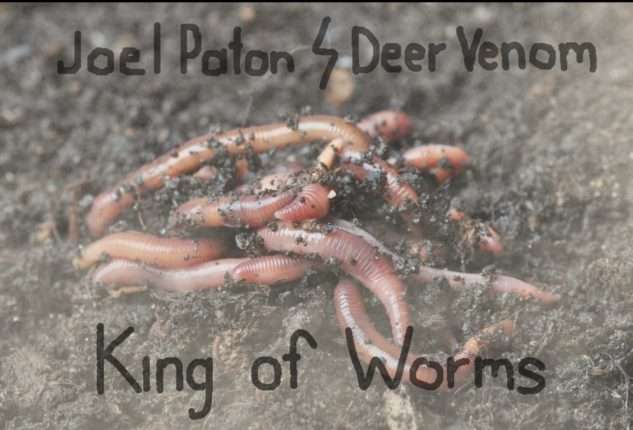 Joel Paton : Deer Venom - King Of Worms