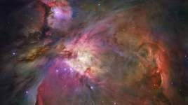 "This dramatic image offers a peek inside a cavern of roiling dust and gas where thousands of stars are forming. The image, taken by the Advanced Camera for Surveys (ACS) aboard NASA's Hubble Space Telescope, represents the sharpest view ever taken of this region, called the Orion Nebula. More than 3,000 stars of various sizes appear in this image. Some of them have never been seen in visible light. These stars reside in a dramatic dust-and-gas landscape of plateaus, mountains, and valleys that are reminiscent of the Grand Canyon. The Orion Nebula is a picture book of star formation, from the massive, young stars that are shaping the nebula to the pillars of dense gas that may be the homes of budding stars. The bright central region is the home of the four heftiest stars in the nebula. The stars are called the Trapezium because they are arranged in a trapezoid pattern. Ultraviolet light unleashed by these stars is carving a cavity in the nebula and disrupting the growth of hundreds of smaller stars. Located near the Trapezium stars are stars still young enough to have disks of material encircling them. These disks are called protoplanetary disks or ""proplyds"" and are too small to see clearly in this image. The disks are the building blocks of solar systems. The bright glow at upper left is from M43, a small region being shaped by a massive, young star's ultraviolet light. Astronomers call the region a miniature Orion Nebula because only one star is sculpting the landscape. The Orion Nebula has four such stars. Next to M43 are dense, dark pillars of dust and gas that point toward the Trapezium. These pillars are resisting erosion from the Trapezium's intense ultraviolet light. The glowing region on the right reveals arcs and bubbles formed when stellar winds - streams of charged particles ejected from the Trapezium stars - collide with material. The faint red stars near the bottom are the myriad brown dwarfs that Hubble spied for the first time in the nebula in visib"