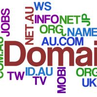 Što je to domena?