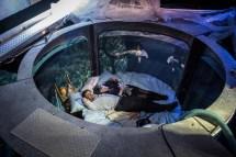 Aquarium Fish Tank Bedroom