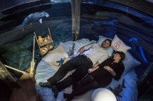Paris Aquarium Underwater Bedroom