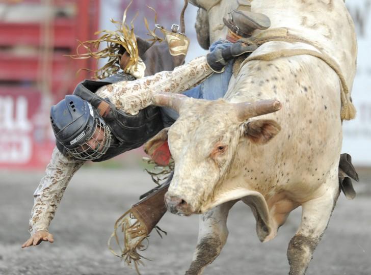 Ковбой Ник Гордый Union Bridge, штат Мэриленд, имеет проблемы освобождая руку от веревки, как он падает, у быка он ехал.  (Lloyd Fox / Baltimore Sun)