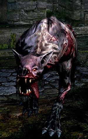 Undead Attack Dog  Dark Souls Wiki