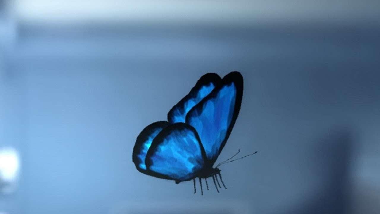 Life Is Strange Butterfly