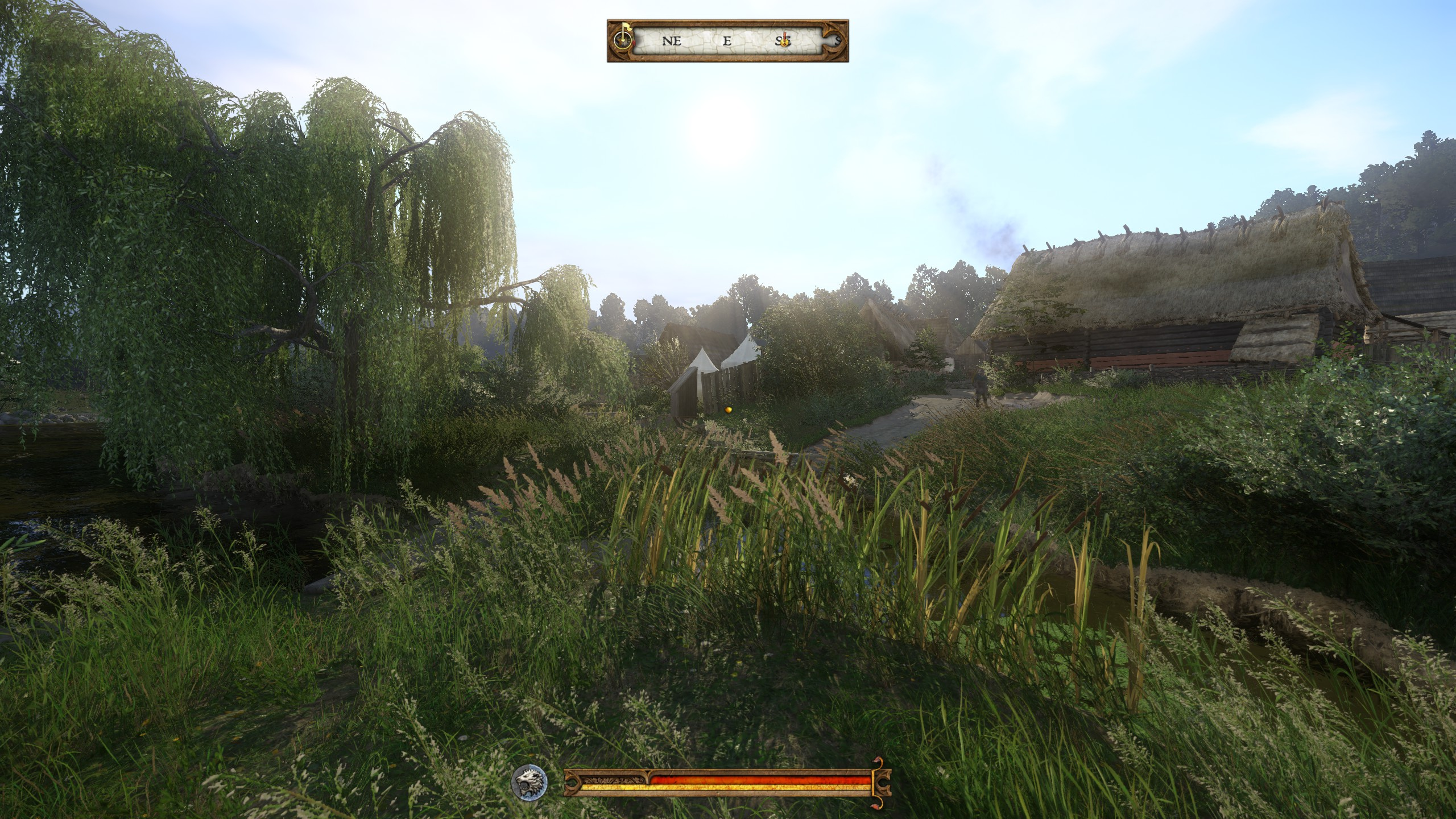 kingdom come deliverance how to remove food poisioning