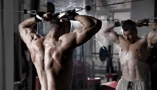モテたい男性が鍛えるべき筋肉は?女子が好む5つの筋肉と筋トレ方法!
