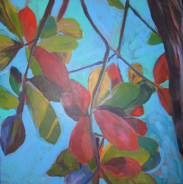 Barbados - Barbados Almond Tree - Darlene Kulig