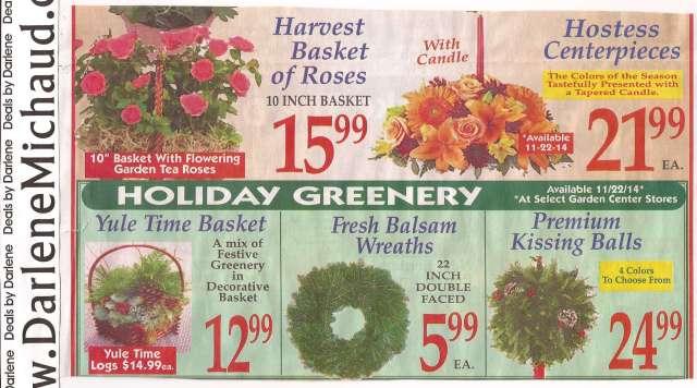 market-basket-flyer-preview-november-16-november-29-page-9b