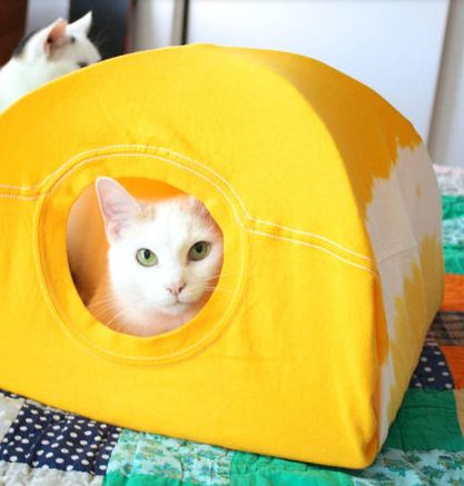cat-tent-t-shirt-diy-darlene-michaud