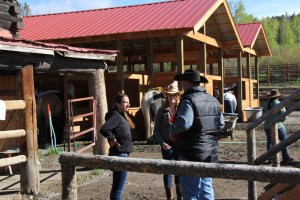 Horseback riding Western Guest Ranch near Jackson Hole and Yellowstone