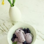 Homemade Blueberry Gelato