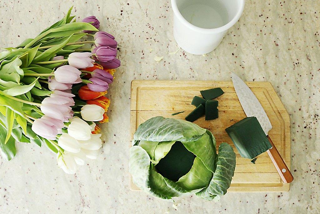 tulip-cabbage