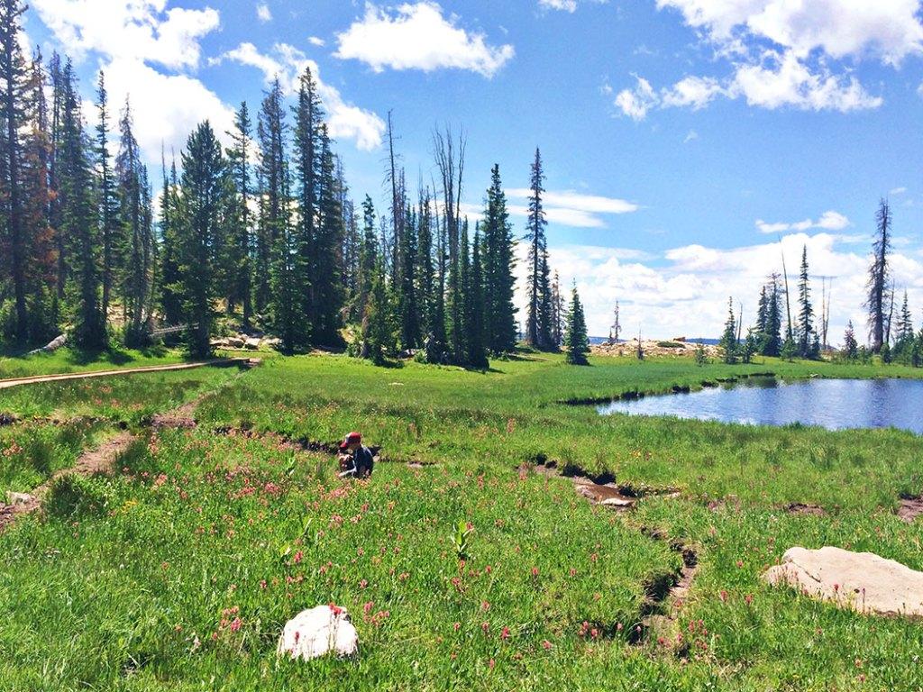 hikes-near-salt-lake-city