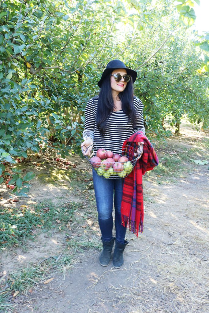 fall-to-do-list-apple-picking-with-basket, apple picking outfit, fall activities apple picking, what to wear to the apple orchard, fall outfit with hat and booties