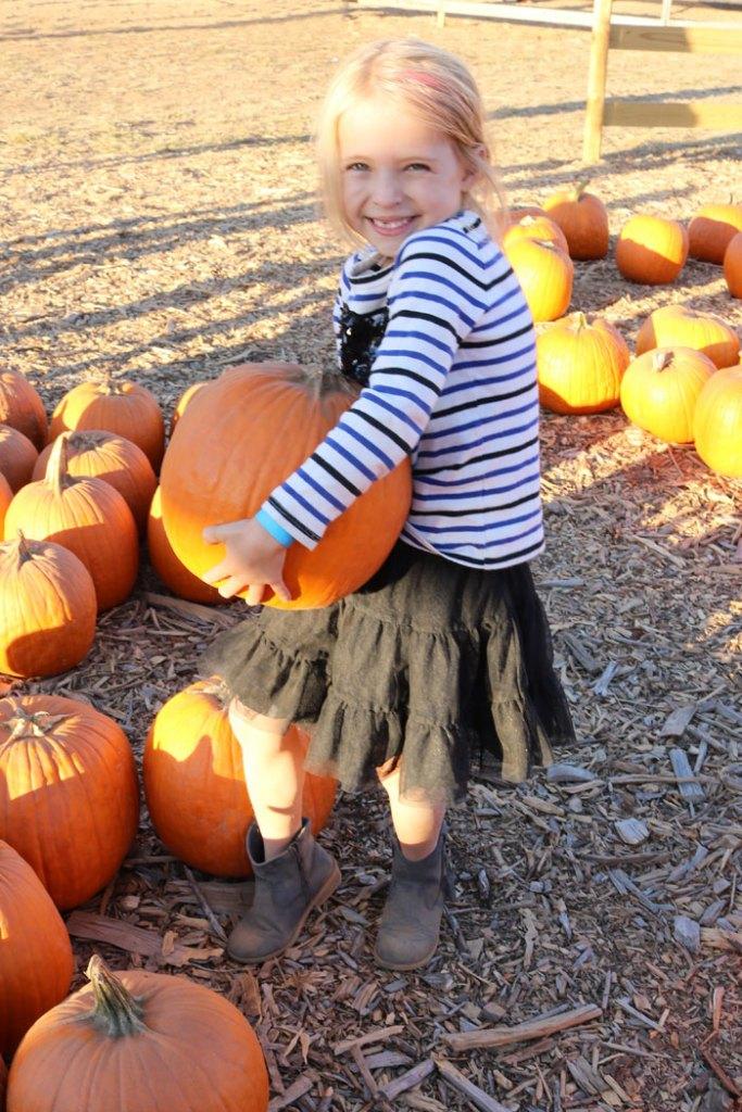 fall-to-do-list-pumpkin-patch