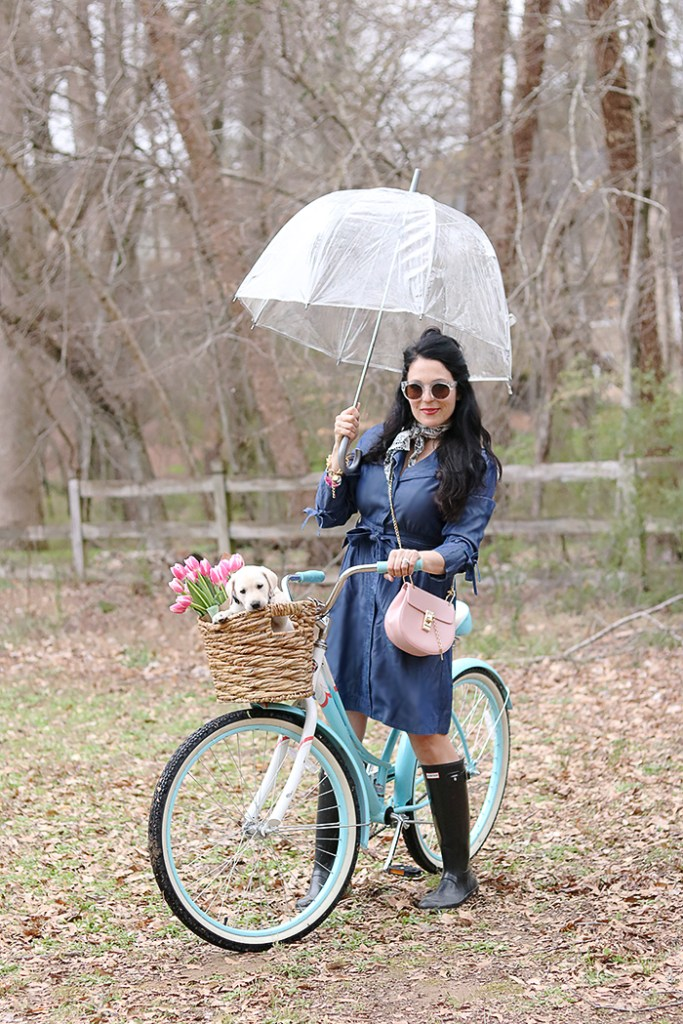 DIY bike basket with old basket and leather belt, diy bike basket, simple, wicker basket, chambray dress, umbrella, hunter boots, puppy in bike basket, dog and bike, spring pictures of puppy love, white labrador, yellow labrador