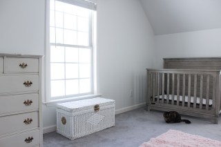 nursery redesign stage 1
