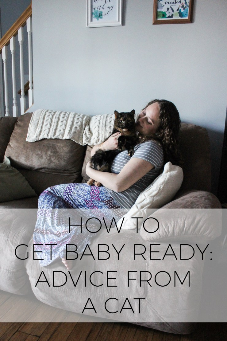 How to get baby ready: advice from a cat #collectivebias #whatfuelsright #ad