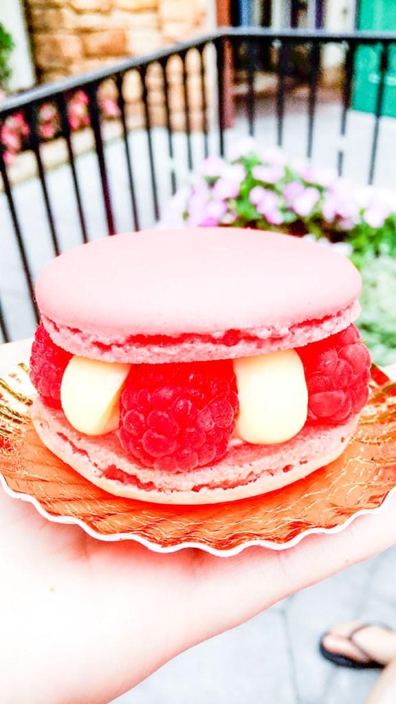 Macaron at Disney World, pink and raspberries!