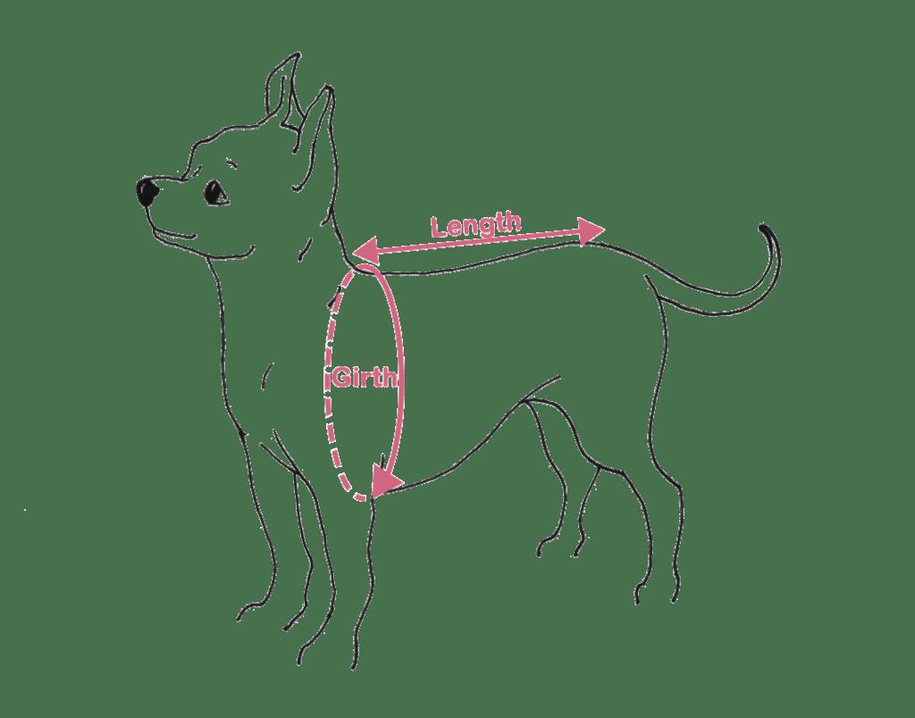 Measure Your Dog Darling Dog Coats