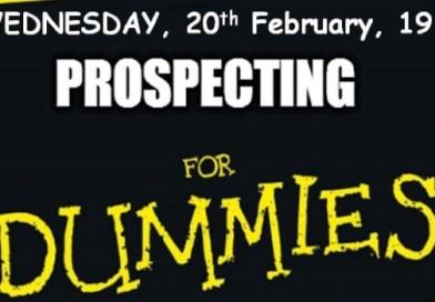 Prospecting for Dummies