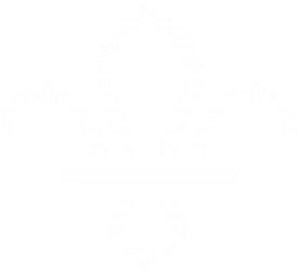 Darlington District Scouts