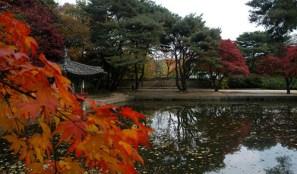 Chang Gyeong Palace