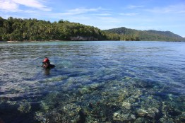 Snorkeling trip to various location in Raja Ampat