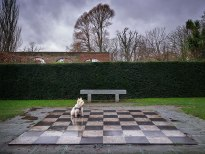 web-Chess-dog-main copy