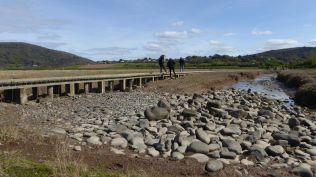 Salt marsh on return from Bossington
