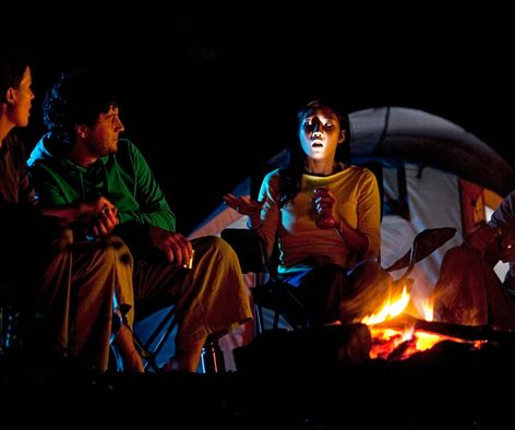 Fireside Tales: Storytelling & Brains