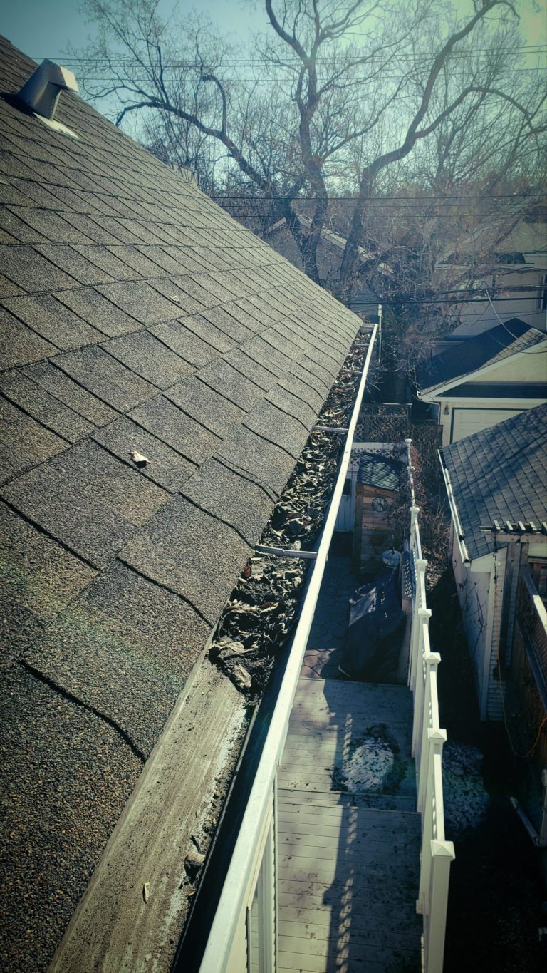 Hey look! Some of the gutter is full and some of it is cleaned! Darren made that happen!