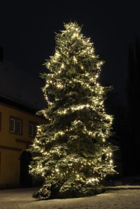 Mega Tall Christmas Tree