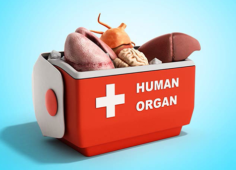 Organ transplantation – more clarification