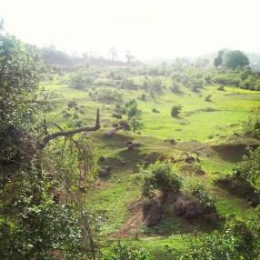 On the way to Lasalgaon, Maharashtra