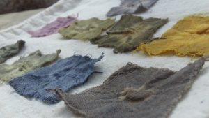squares of cotton dyed in different natural colours