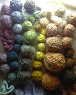 Variety of naturally dyed wool using natural mordants