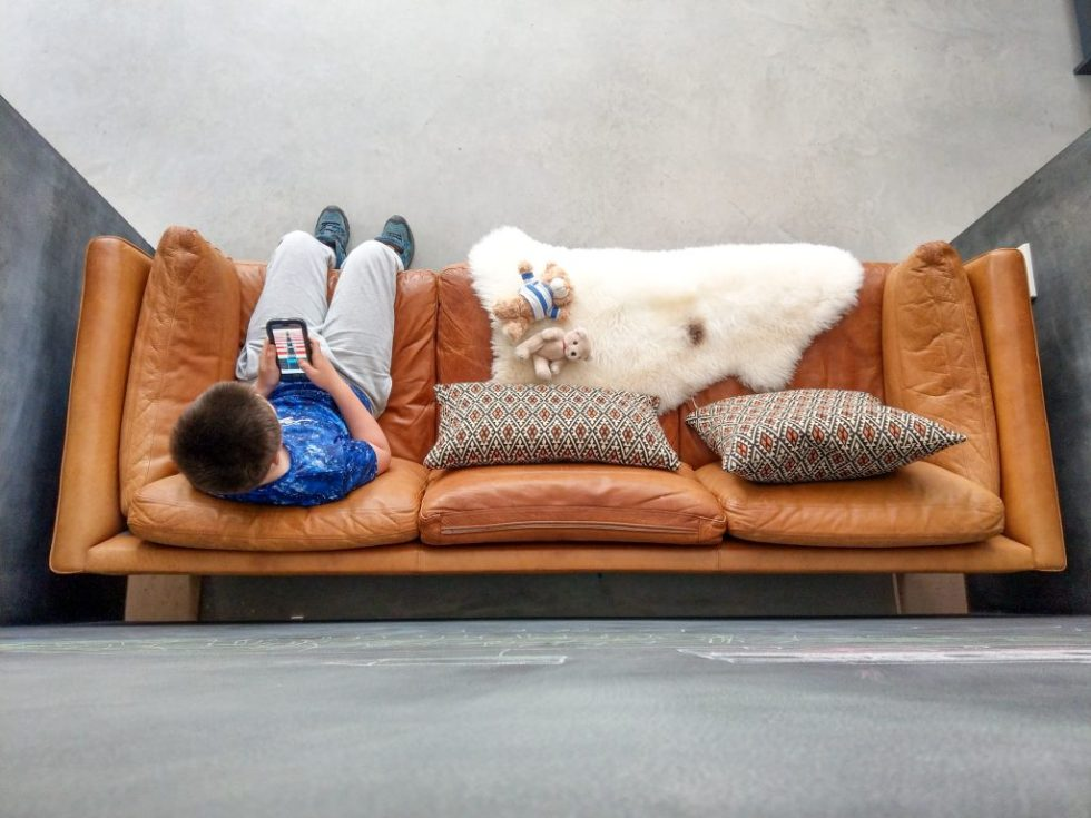 sheepskin on sofa