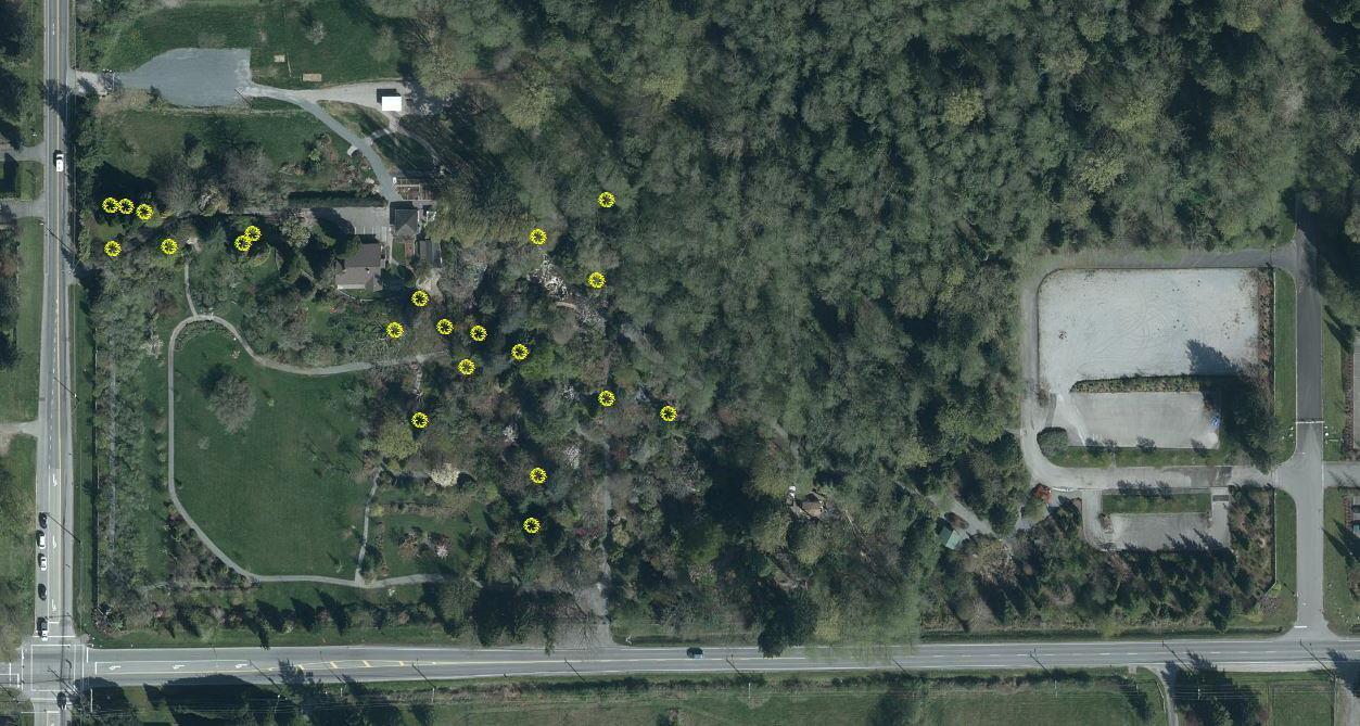 location-of-heritage-tress