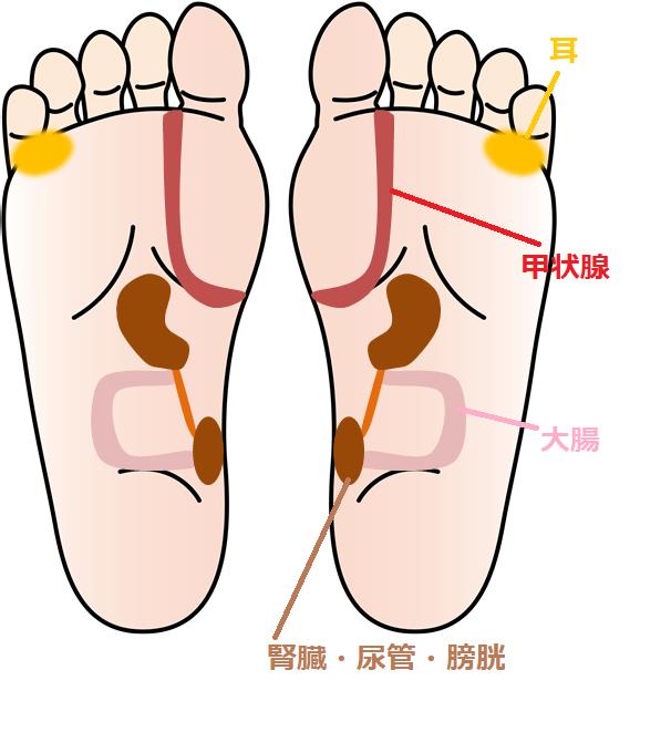足ツボの図