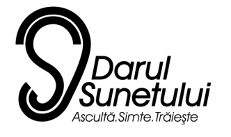 logoDS500