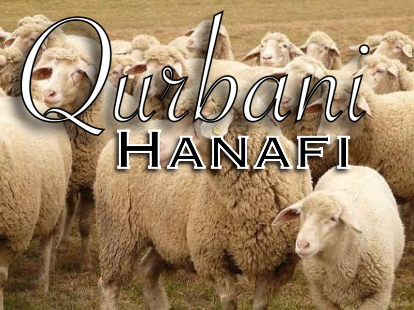 Simplified rules for Qurbani according to the Hanafi Madhab