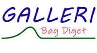Logo galleri bag diget