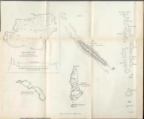 small resolution of darwin c r 1874 the structure and distribution of coral reefs 2d edition london smith elder and co