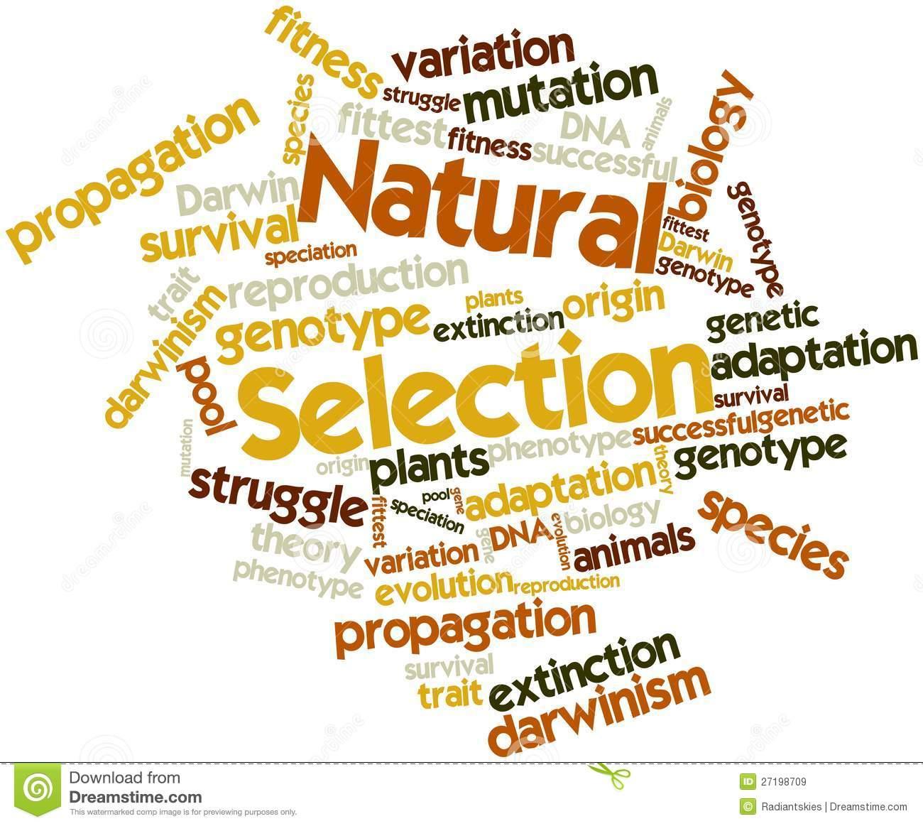 Selection Naturally