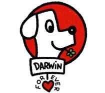 Darwin Forever