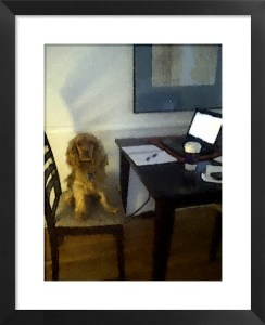 FotoSketcher - Aubry - Take Your Dog to Work - 2011
