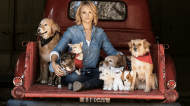 Few things can make country singer Miranda Lambert's heart sing like her seven rescue dogs.